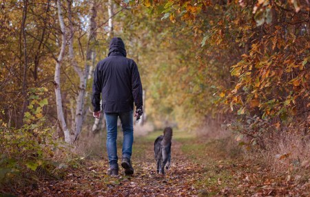 Mini-Seminar nach Hundeteamschule Anita Balser
